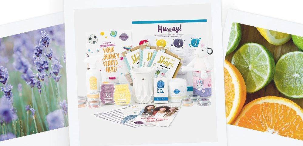 Scentsy Consultant Account Starter Kit Example