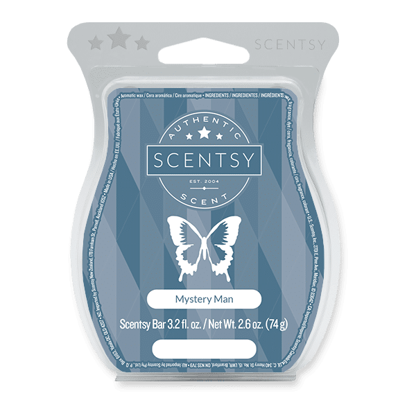 Mystery Man Scentsy Bar Scentsy Wax Melts