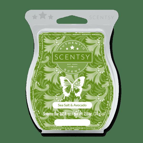 Sea Salt & Avocado Scentsy Bar Scentsy Wax Melts